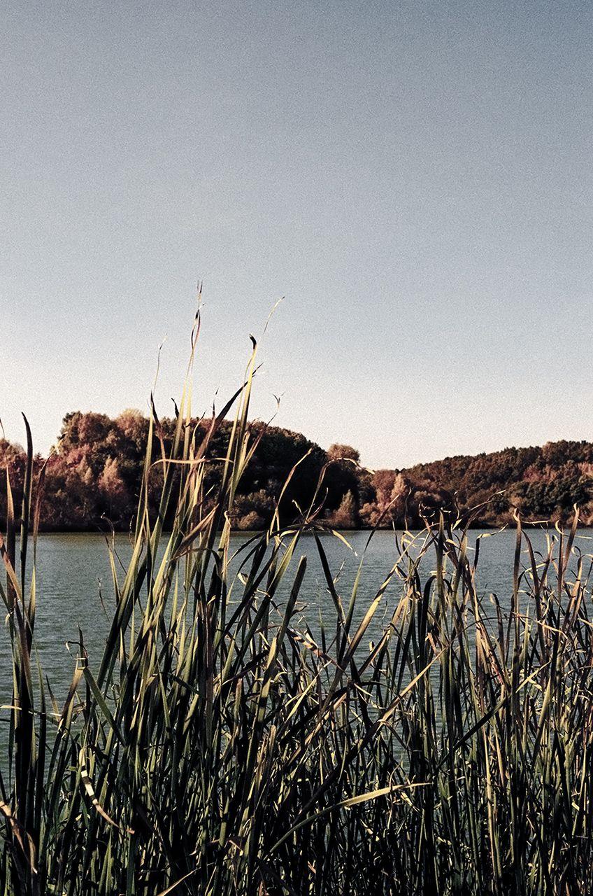 Вид на пруд зі сторони замку - Photo by Oleksii Marchenko